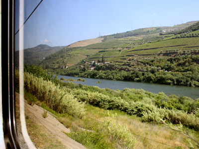 Train ride in the Douro Valley in Portugal