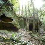 Caves alongside Wollombi Brook (364766)