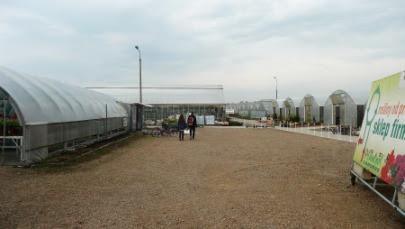 Plantpol Zaborze