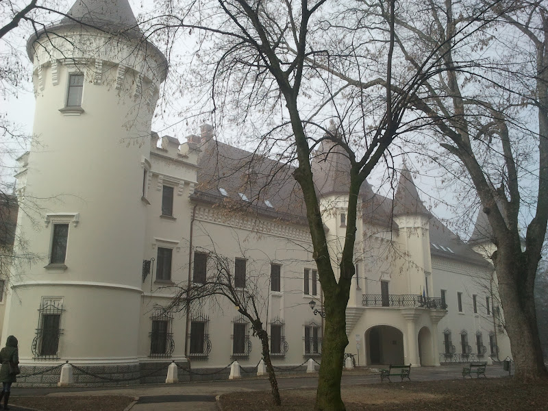 Karoly castle