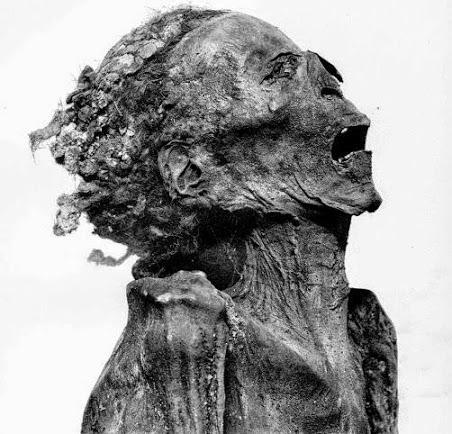 Unknown Man E com sua expressão de dor congelada para a eternidade