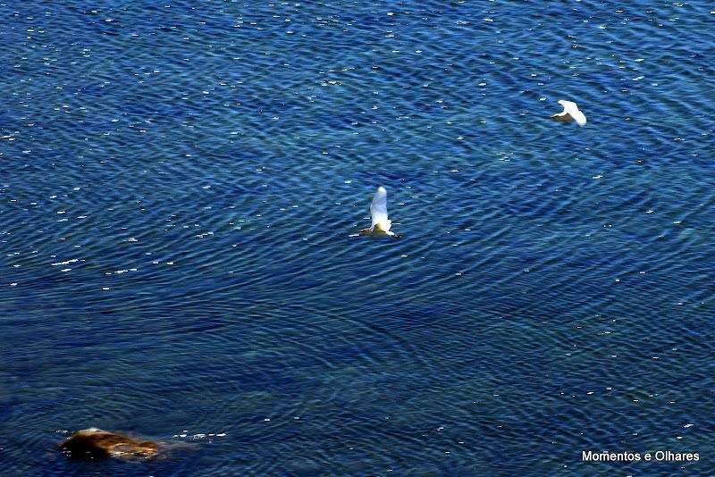 Verão à beira mar