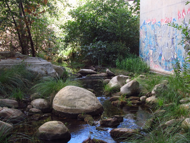 Gaviota Creek beneath the highway