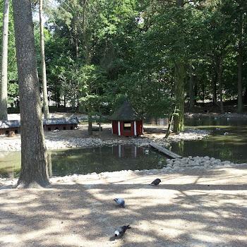 Ängelholm Historical Park 878