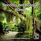 Secreto del Bosque 80mi