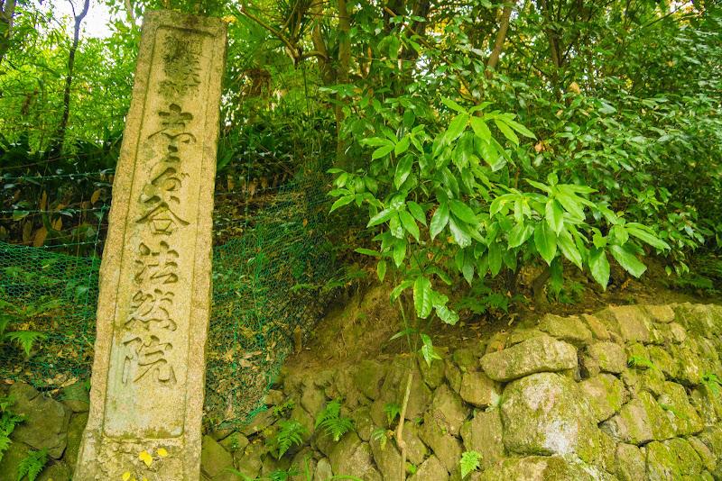 京都 紅葉 法然院 写真1