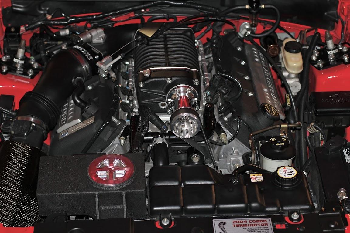 Cobra Engine Bay Pictures | SVTPerformance.com