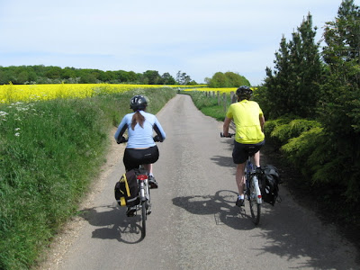 rear view of two cyclists on lane thro yellow fields