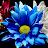 SHIVKUMAR VISWANATHAN avatar image
