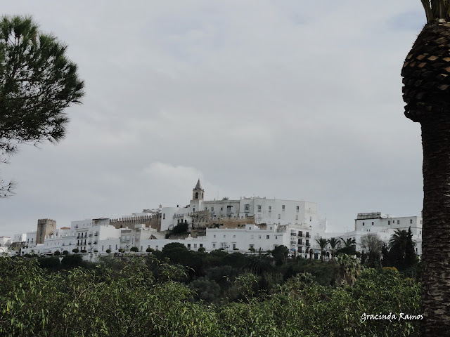Marrocos 2012 - O regresso! - Página 3 DSC04595