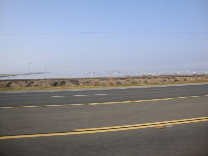 Headwind tailwind fuelly forums for Shasta motors redding california