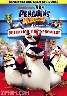 Biệt Đội Cánh Cụt Vùng Madagascar - Penguins of Madagascar (2014) Poster