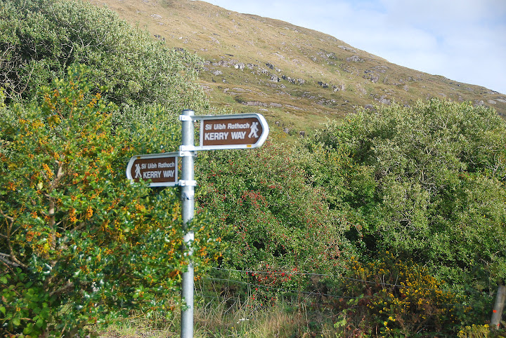 While driving in Ireland, watch for hikers (especially on the Kerry Way)