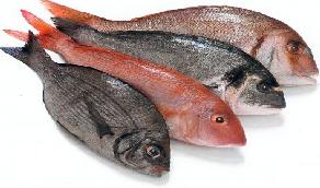Pescado gratinado con langostinos