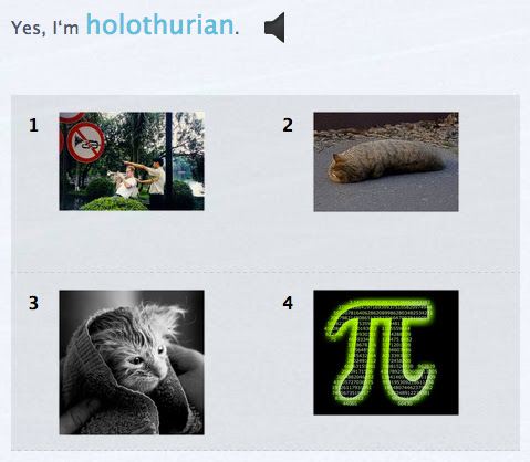 "multiple choice question with sentence ""Yes, I'm holothurian"""