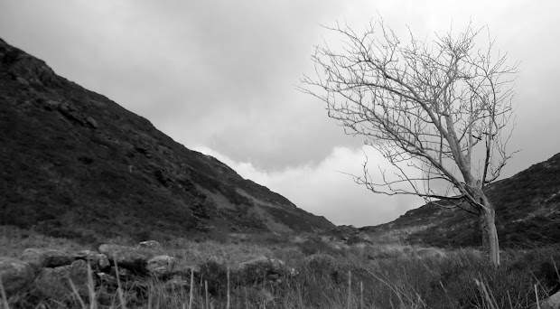 Path to Crimpiau from Capel Curig