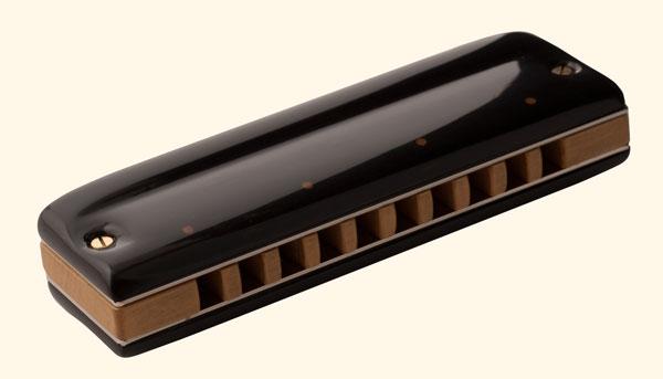 Dortel : Nouveaux harmonicas custom - Page 3 TI-MK-Buis-Ebene-A
