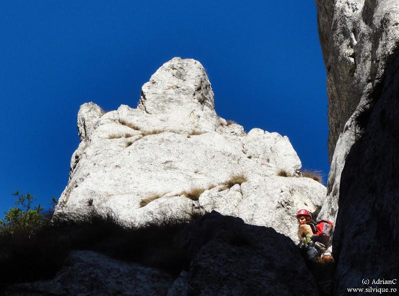 Piatra Craiului - Acul Crapaturii 3A, 5lc