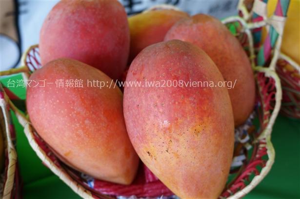 台湾玉文マンゴー