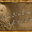 Urdu Poetry With Pics8