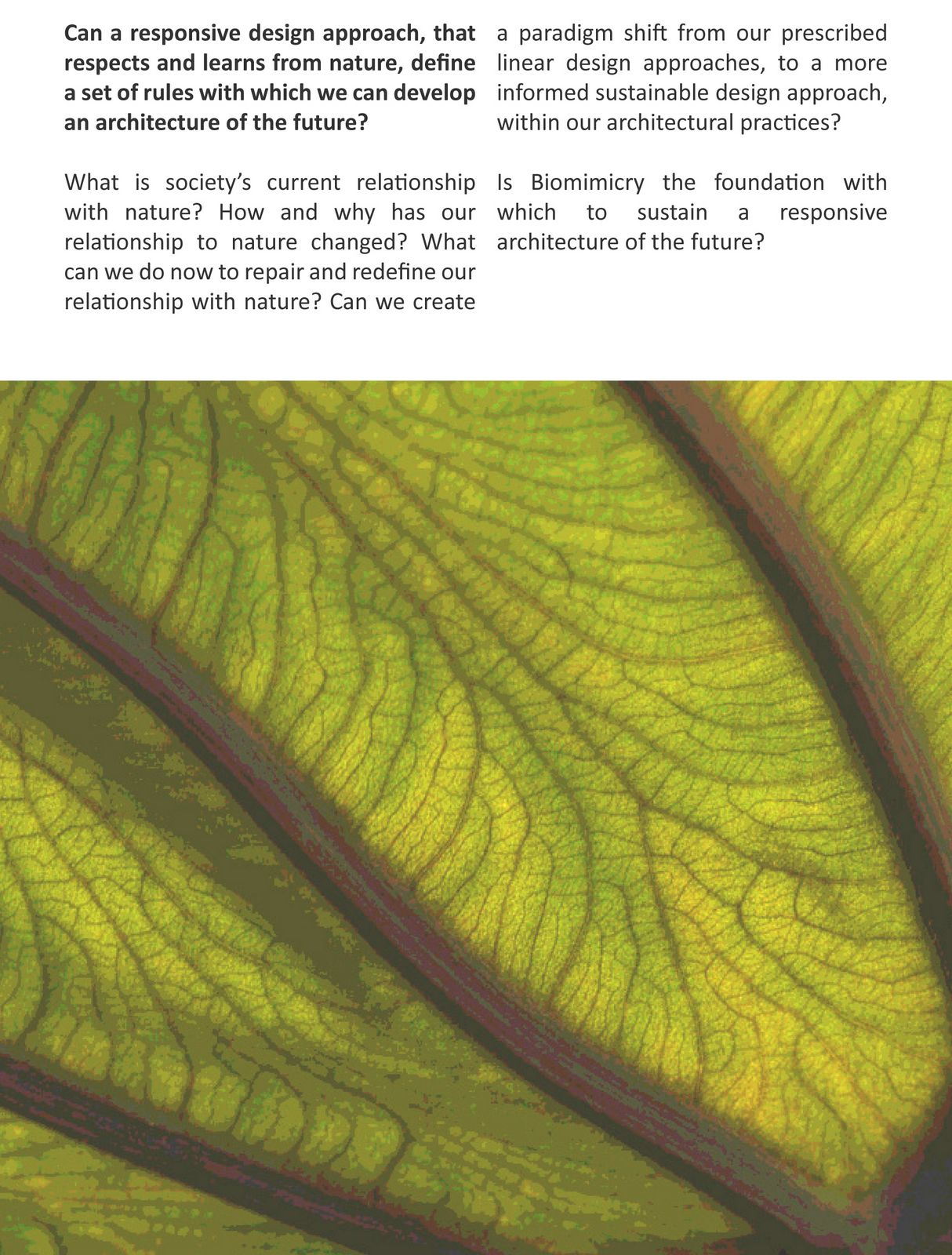 Thesis on biomimicry