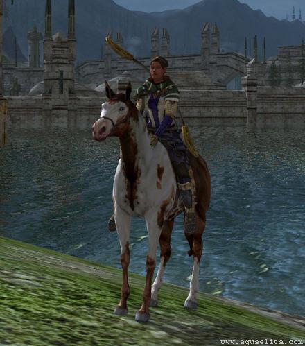 Дорогостоящая лошадь в mmorpg Lord of the Rings Online