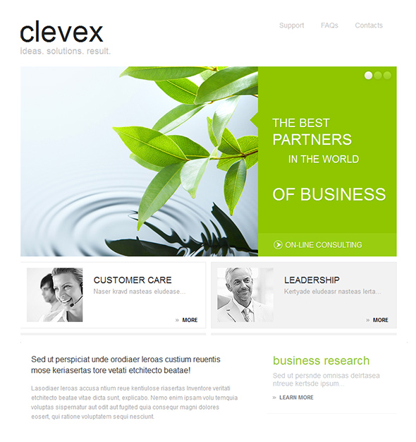 Clevex Green WordPress Business Theme