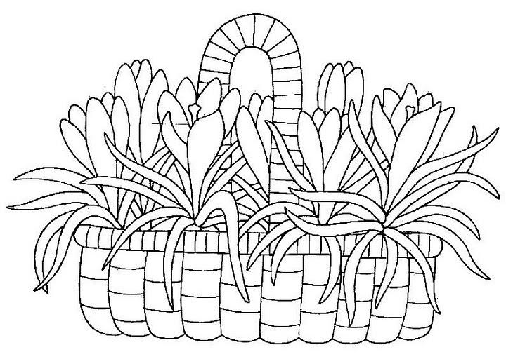 pinto dibujos  colorear canasta de flores