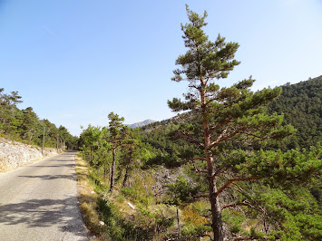 Petite route tranquille