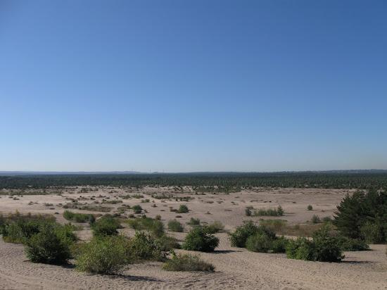 widok pustyni od strony Chechła