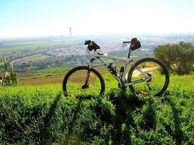 Rutas en bici. - Página 21 Jabugo%2B010
