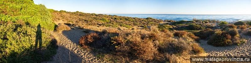 дюны в Марбелье фото высокого разрешения