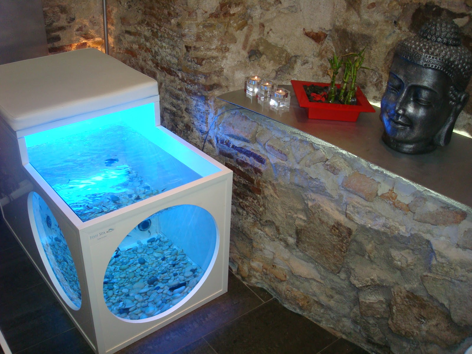 beauty spa smile fish spa
