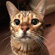 Ryo I