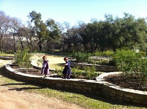 Growing Up Austin - Zilker Botanical Gardens
