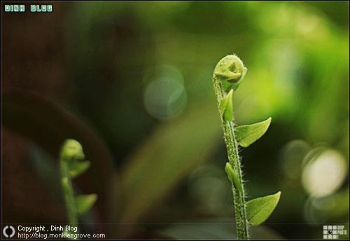 การเรียนรู้ กับการเปลี่ยนแปลงของธรรมชาติ