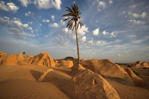 Dunes sanctuary