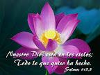 Salmo 115.3