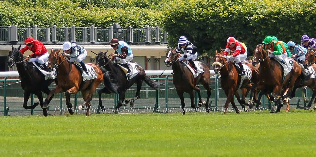 Photos Longchamp 25-05-2014 IMG_1164
