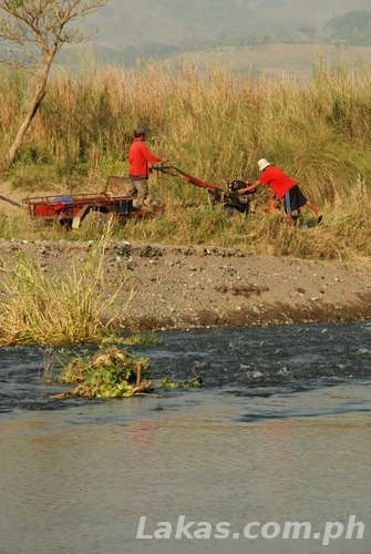Clearing grass beside the river