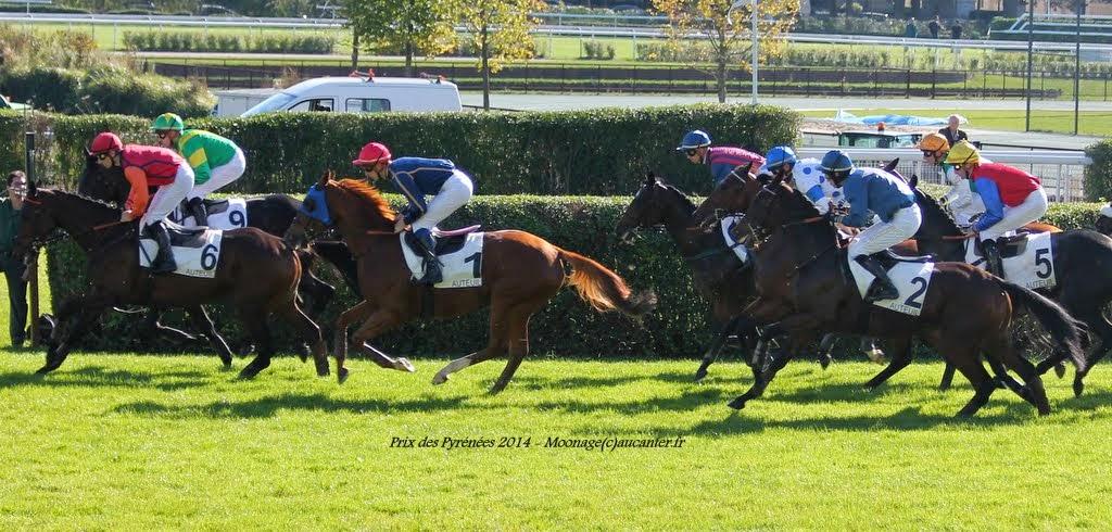 Photos Auteuil 18-10-2014 IMG_4700