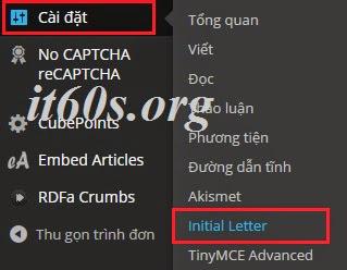 """Cách tạo """"Drop cap"""" cho bài viết Wordpress 2"""