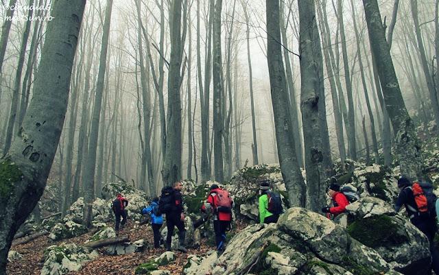 ceata pe munte