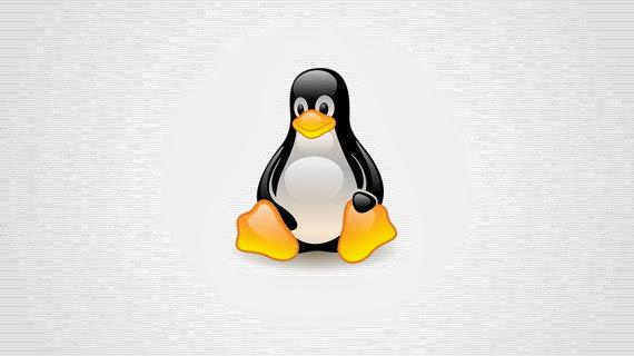 Kernel Linux 3.12 'Suicidal Squirrel'