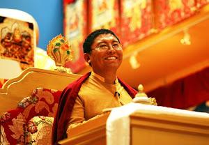 צוקני רינפוצ'ה, מורה בודהיסטי