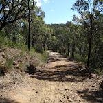 The Oaks Fire Trail (74556)