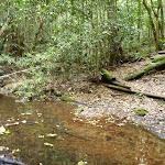 Crossing Wollombi Brook (364373)