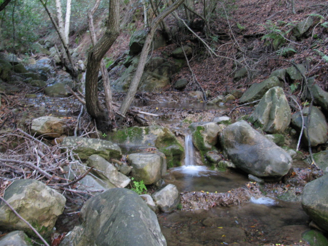 a bit of the stream