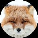 Fox Drumming