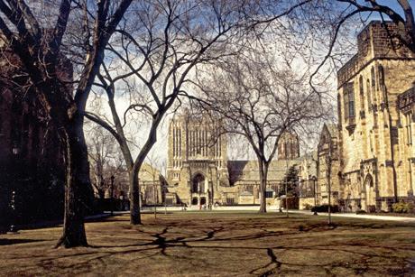 Universitas Yale